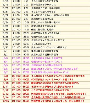 スクリーンショット(2010-06-17 19.59.23).png